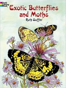 Butterflies and Moths Coloring Book