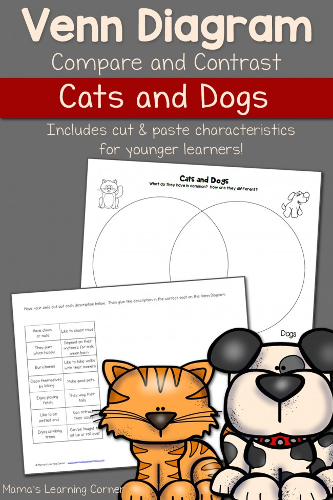 cats and dogs venn diagram worksheet mamas learning corner how to pet a cat diagram diagram of cats and dogs #12