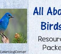 Birds Worksheet Packet