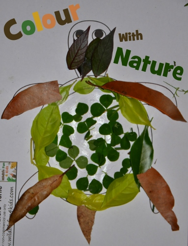 Color with Nature Animal Templates