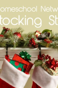 My Favorite Giveaway of the Year: $400 Stocking Stuffer!