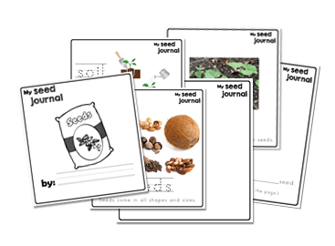 Seeds Preschool Journal