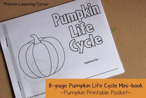 Pumpkin Life Cycle Mini-Book