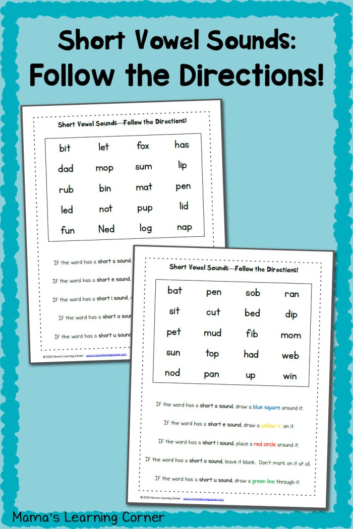 Short Vowel Worksheets:  Follow the Directions