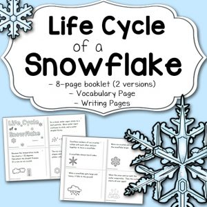 Life Cycle of a Snowflake