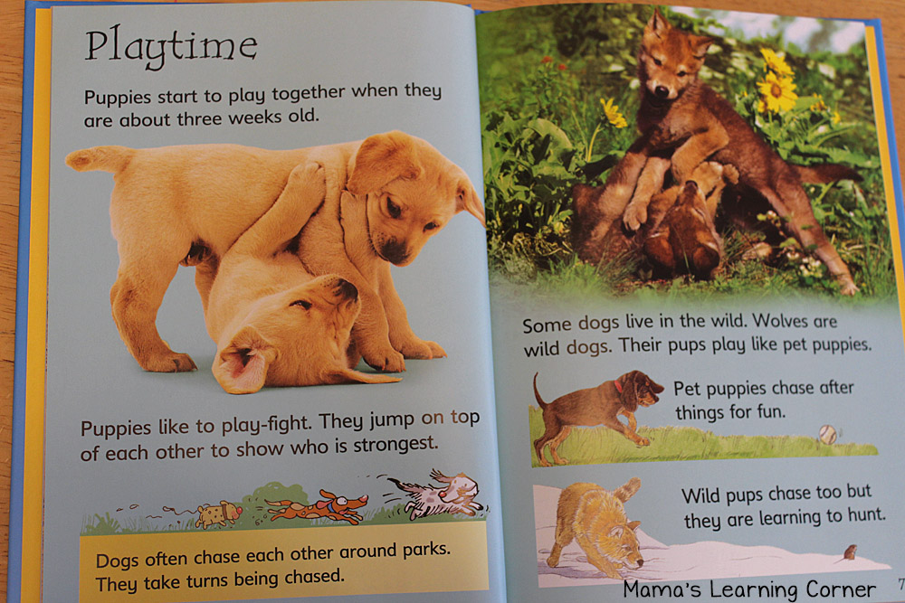 Dogs book for Kids