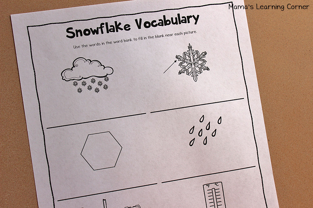 Snowflake Life Cycle Booklet