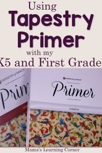 Using Tapestry Primer with My Kindergartner and First Grader