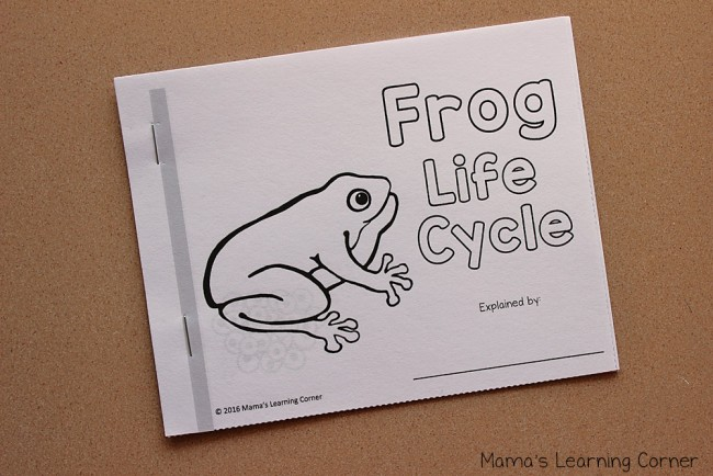 Life Cycle of a Frog Mini Book