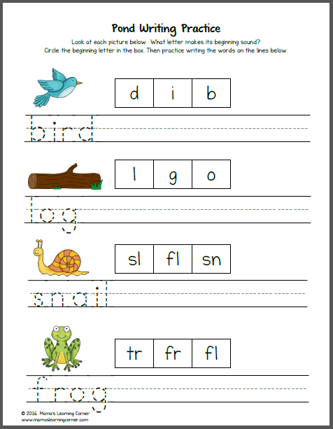 Pond Worksheets for K and First