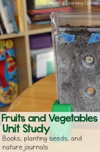Studying Fruits and Vegetables: Hands On Activities