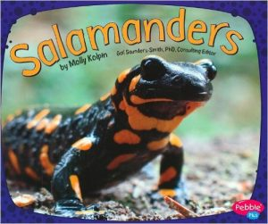 Salamanders by Molly Kolpin