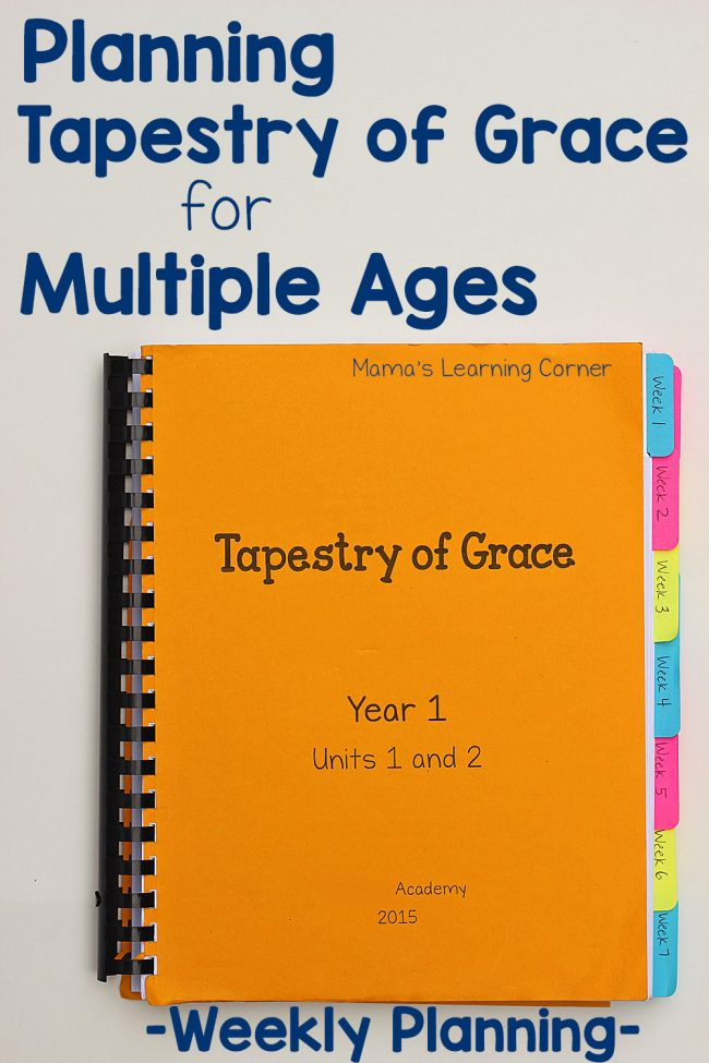 Planning Tapestry of Grace for Multiple Ages - practical tips and suggestions!
