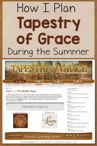 How I Plan Tapestry of Grace During the Summer