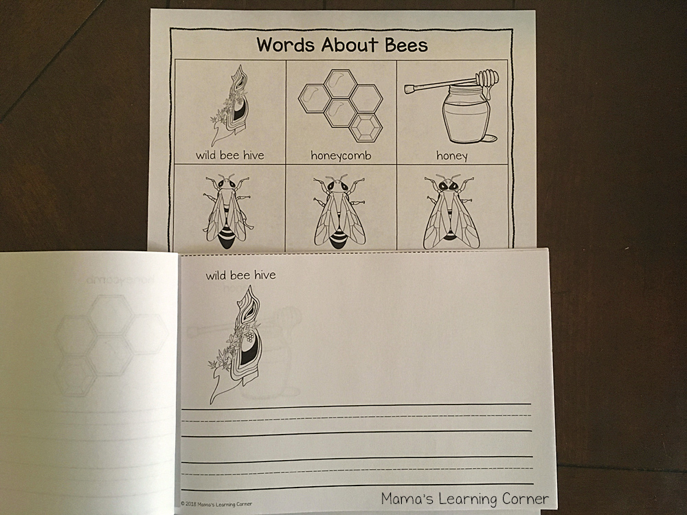 Bee Writing Booklet black and white dictionary