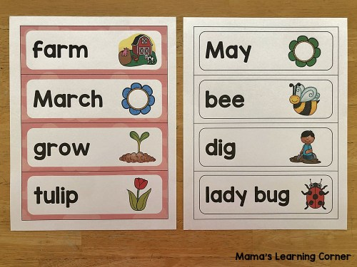 Spring Word Wall and File Folder Activities