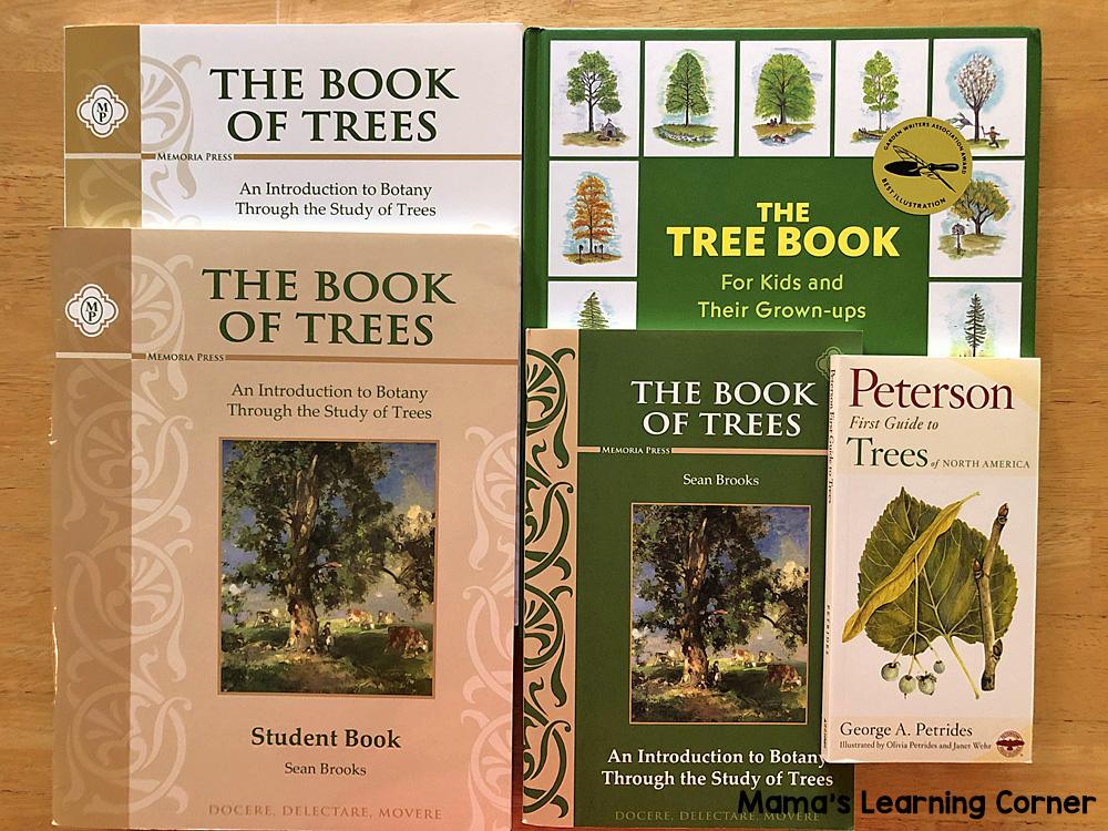 6th Grade Homeschool Curriculum Book of Trees Study