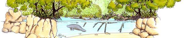 Mangrove Burgers' Zoo