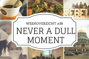 weekoverzicht Never a Dull Moment #38