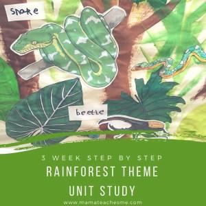 rainforest theme, unit study, homeschool, preschool