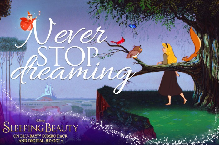 SleepingBeauty_Dream never stop dremaing