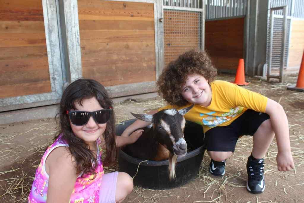 Gaspi y Sarah con animales en la granja