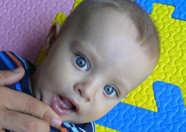 bebé, dientes, 6 meses