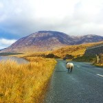 4 Reasons to book an Ireland package