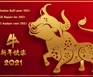 Faites analyser votre propre diagramme BaZi pour l'Année du Buffle de Métal 2021 !