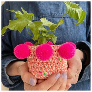 Crochet Jungle - Plant Pots
