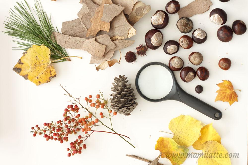"""Résultat de recherche d'images pour """"mesa natural montessori"""""""