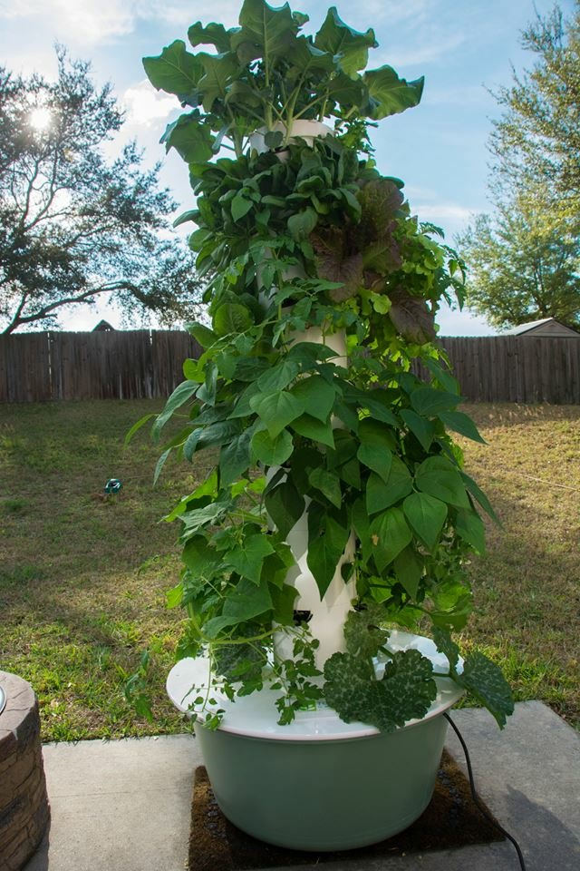 Beyond Organic Gardening with the Tower Garden System — Mami of ...