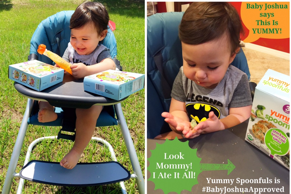 Experience the Real Taste of Homemade with Yummy Spoonfuls Frozen Baby Food