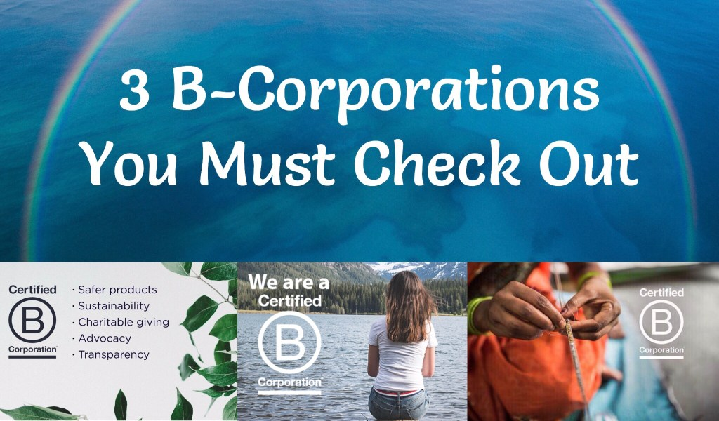 3 B-Corporations You Must Check Out!