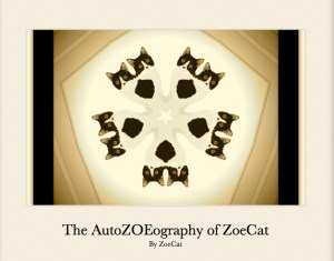 The AutoZOËography of ZoeCat