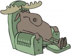 Moose asleep in a chair