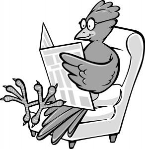 Bird reading