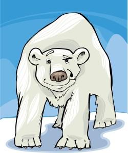 K.N. Polar Bear