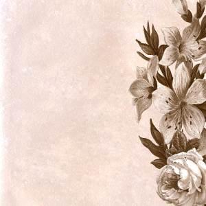 background 2054865 1920 300x300 - Intervista a Irene una donna-mamma vittima di stalking - Metamorfosi di una Farfalla