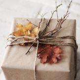 pacchetti 7