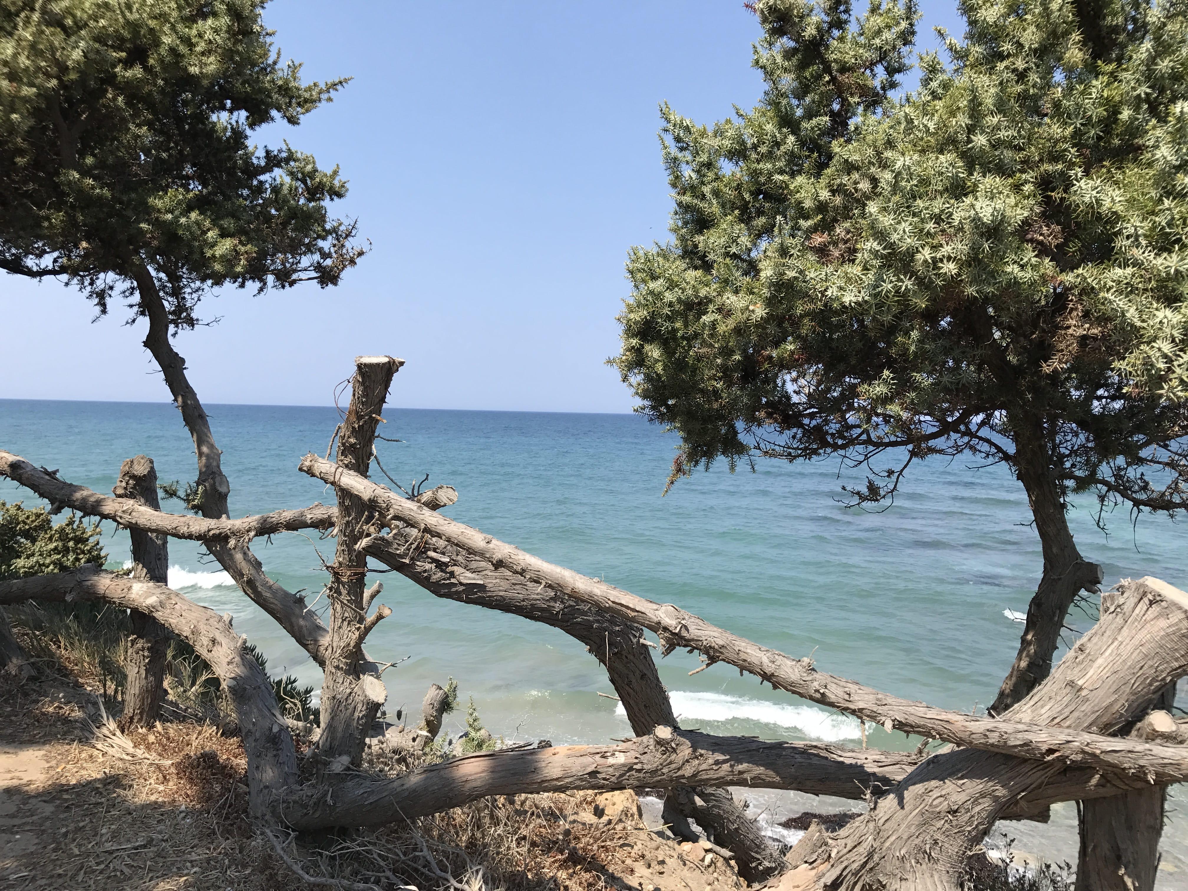 In Grecia con bambini, quale isola scegliere