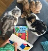 come far diventare la lettura un gioco