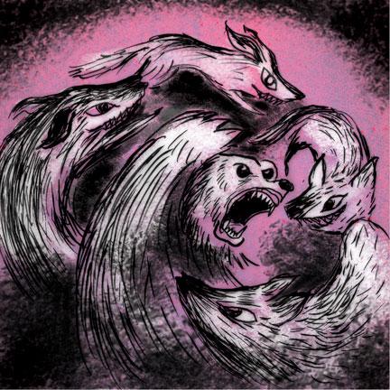 wolvesandbear