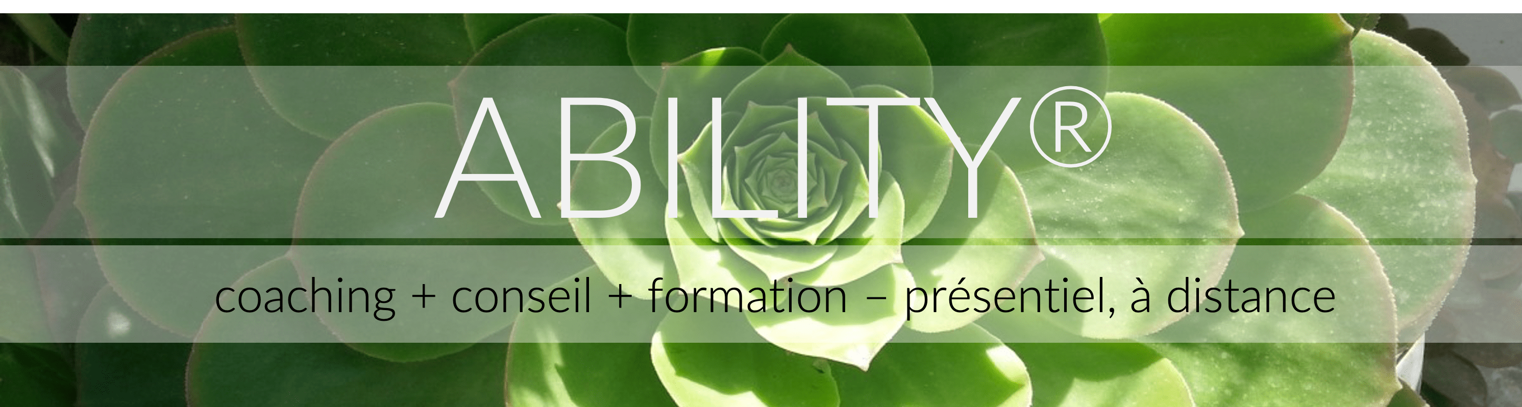 ability : méthode regroupant conseil, coaching et formation