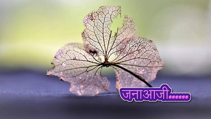 Janaaji