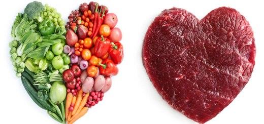 शाकाहार मांसाहार