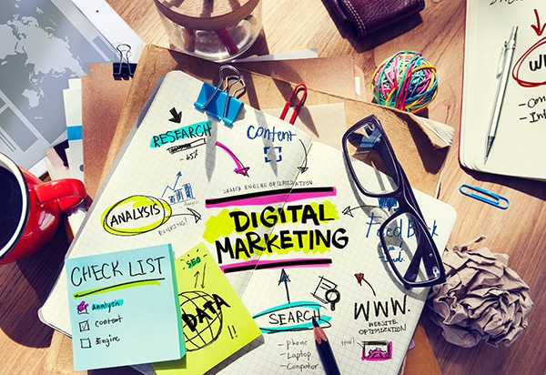 digital marketing manae
