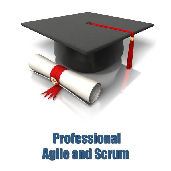 Professional Agile and Scrum - White   Management Square