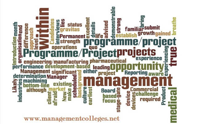 Organizational Management Culture