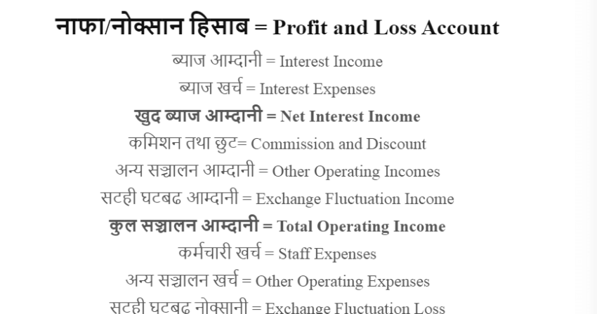 Nepali and English Version of Income Statement